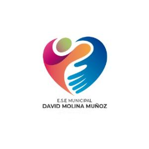 E.S.E David Molina Muñoz